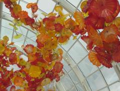 ceiling flowers