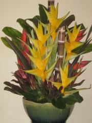 floral arrangment mauna