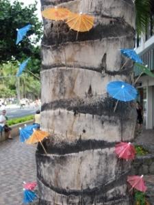 umbrellas on tree