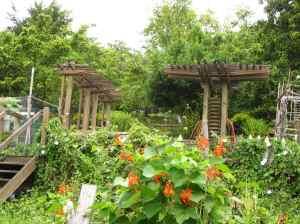 Danny Woo International District Community Gardens