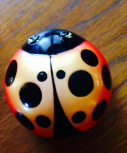 My lady bug timer