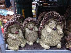 Wednesday market hedgehogs, Bruges