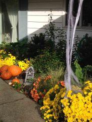 halloween yard